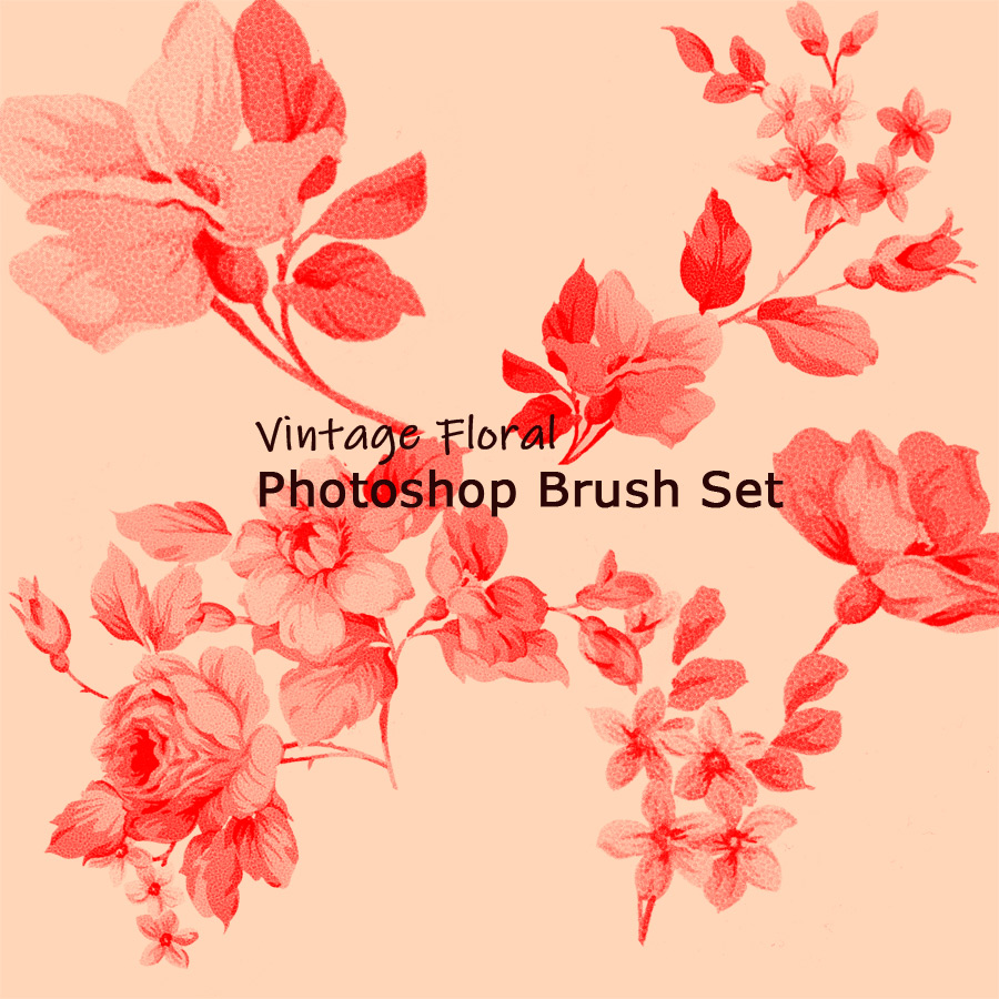 Vintage Floral Photoshop Brush Set(psd and abr)