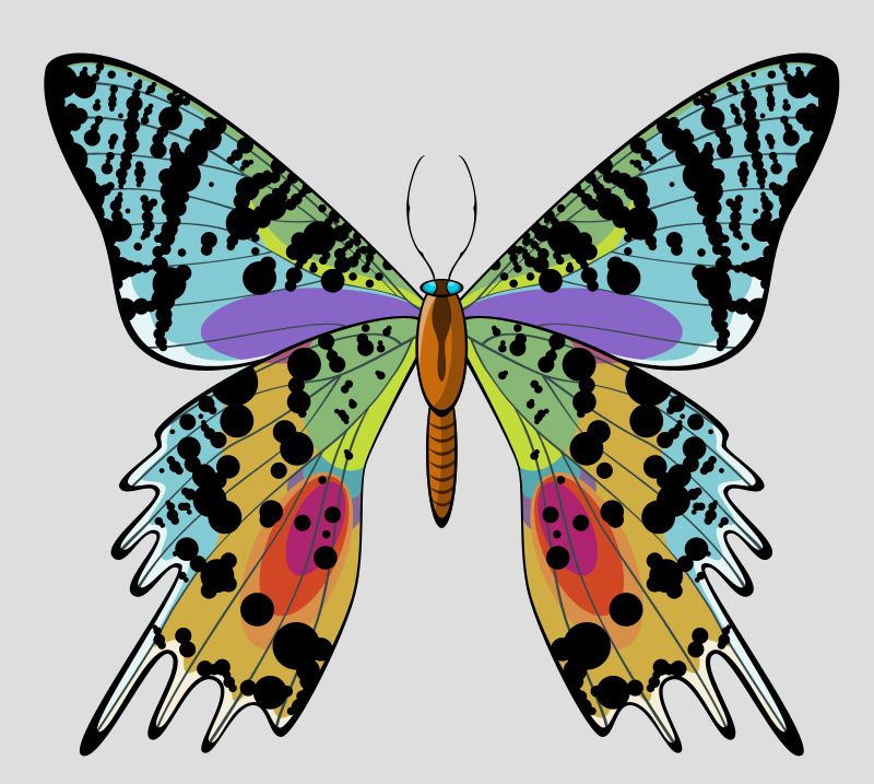 Beautiful butterfly layered vector psd